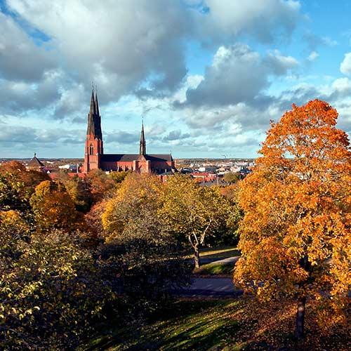 Uppsala får pris som Sveriges bästa stadskommun – för fjärde året i rad