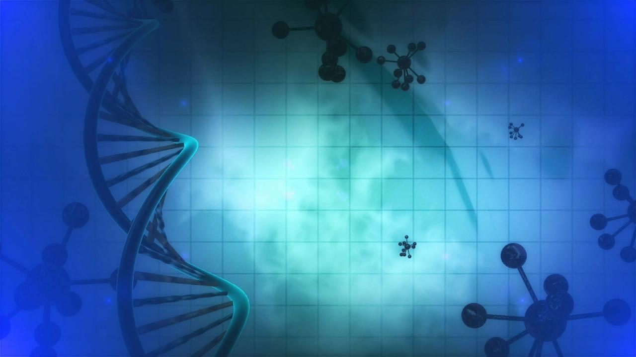 Minnet av en hjärtinfarkt lagras i våra gener