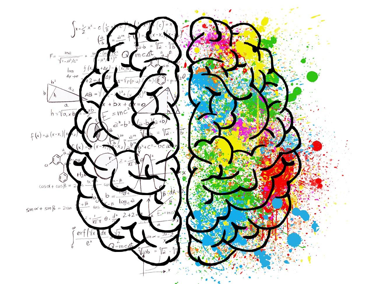 Ursprungscellen påverkar hjärntumörers tillväxt och känslighet för behandling
