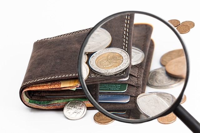 Ny webbfunktion visar vad kommunens budget går till