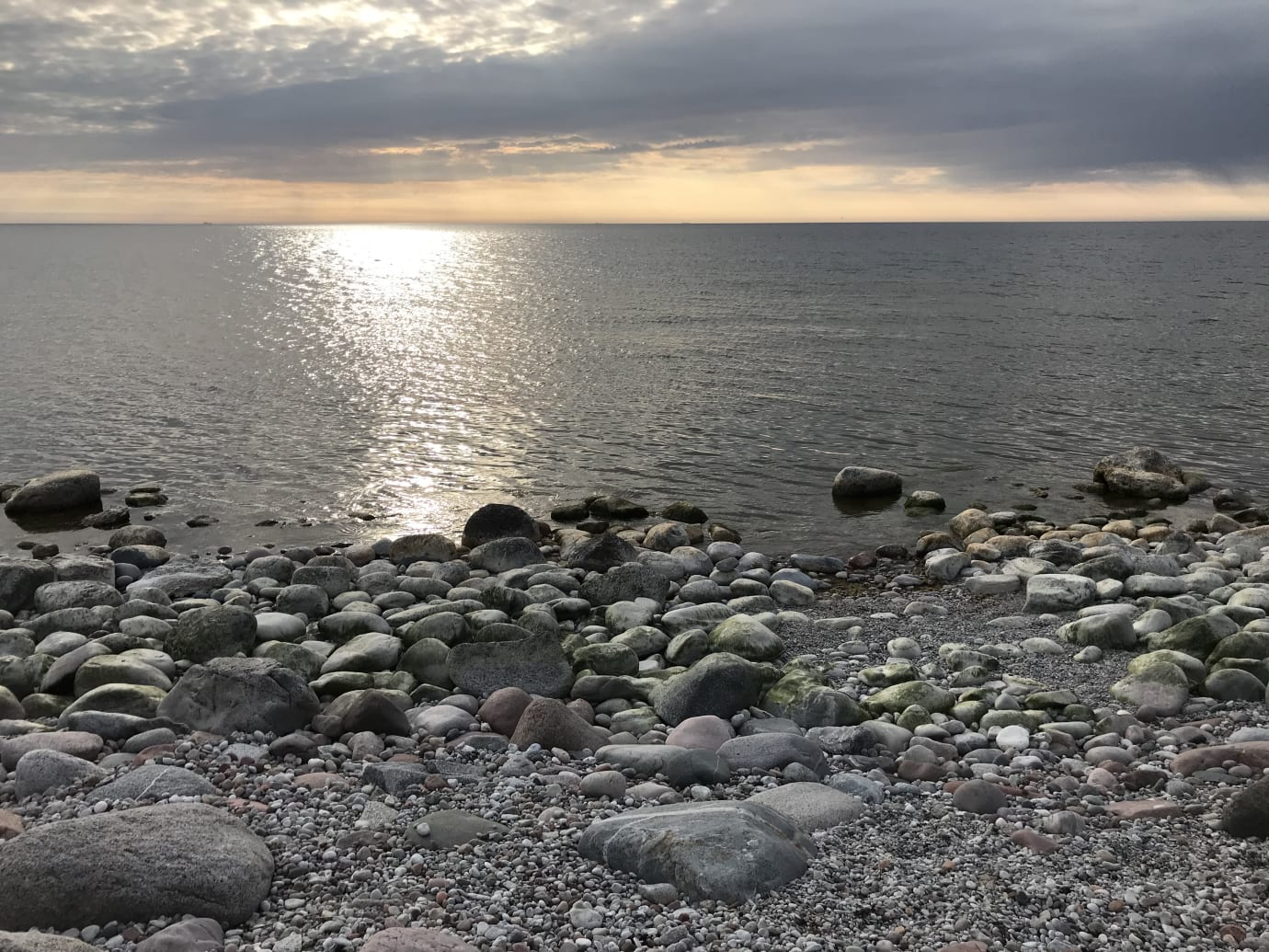 Sverige har haft en ineffektiv miljöpolitik för Östersjön jämfört med andra länder