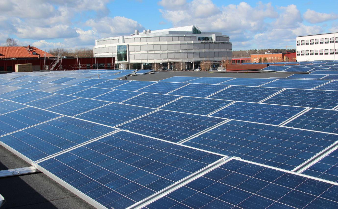 Nu invigs Akademiska Hus största satsning på solceller