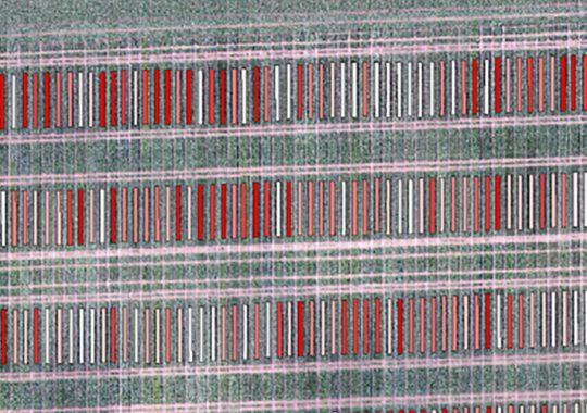 Utvärdering av odlingsförsök med drönare ska testas