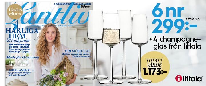 6 nr av Lantliv för 299 kr + 4 champagneglas från Iittala